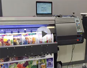 Witcolor eco solvent printer